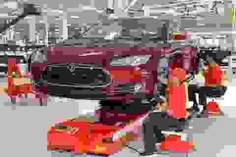 Tham quan nhà máy lắp ráp xe thể thao chạy điện Tesla