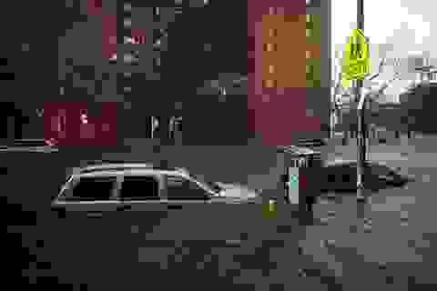 Nhiều ô tô ngập trong nước do bão Sandy