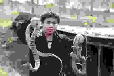 """Khám phá """"vương quốc rắn"""" lớn nhất ở Trung Quốc"""