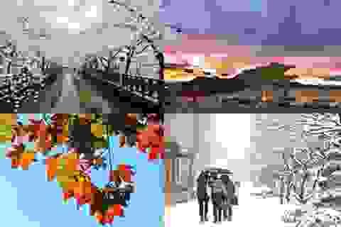 4 xúc cảm khó cưỡng khi du lịch Seoul
