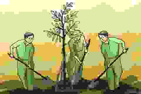 Tết trồng cây trở thành nét đẹp truyền thống của văn hóa Việt