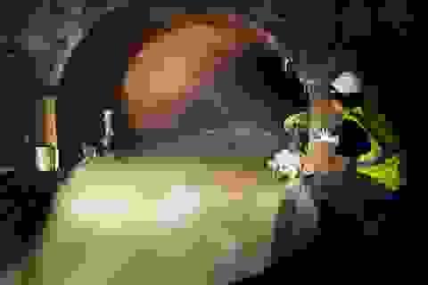 Sản xuất bia từ…nước thải