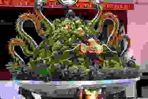 Cận cảnh đĩa trái cây đăng ký kỷ lục Guiness Việt Nam
