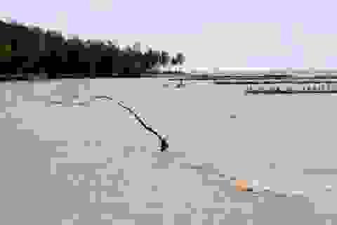 ĐBSCL sẽ ngập 90% diện tích nếu nước biển dâng cao 1m