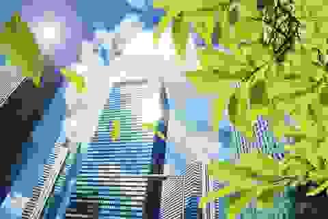 """Biệt thự sinh thái: Nhà giàu toàn mua hàng """"lởm"""""""