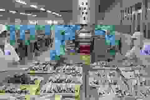 Mỏ vàng 40 tỷ USD tại Việt Nam có tên là thực phẩm