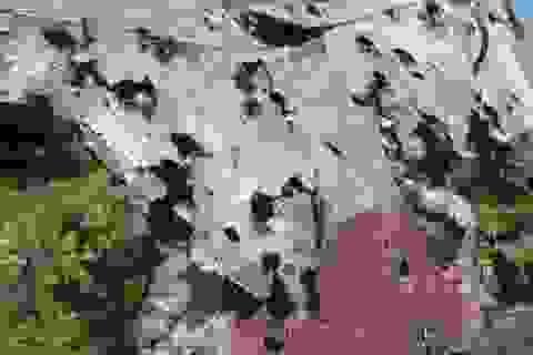 Phát hiện mảnh vỡ nghi của tên lửa tại hiện trường MH17