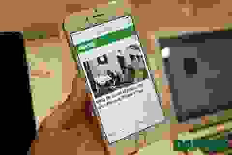 iPhone 6 xách tay bình ổn giá, sức mua thấp so với năm trước