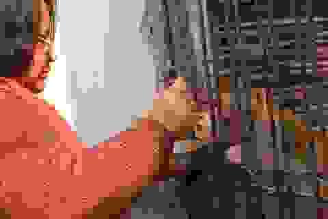 Cặp vợ chồng để lại toàn bộ tài sản cho khỉ