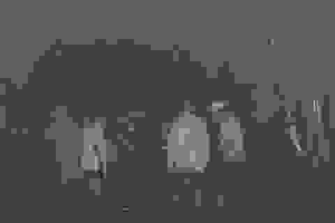 Chưa tìm thấy 3 công nhân mất tích trong hầm thủy điện
