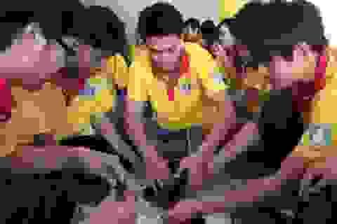 TPHCM ra quân chiến dịch Xuân tình nguyện 2014