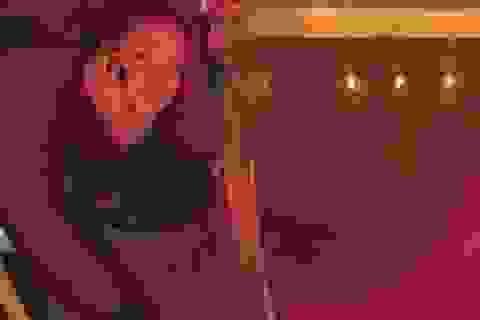 Các cô gái nóng bỏng trong bể bơi quảng bá cho Xperia Z1 của Sony