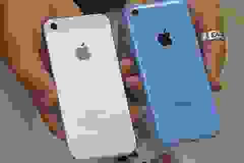 Nghịch lý: Người dùng thà mua iPhone 5 cũ thay vì 5C mới