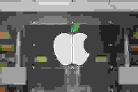 """Apple lần đầu tung quảng cáo """"đá đểu"""" Samsung"""