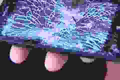 Điện thoại Lumia 520 đỡ đạn cứu chủ nhân trong vụ cướp