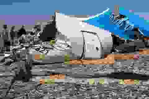 Nhiều nước tuyên bố ngừng các chuyến bay đến thiên đường du lịch của Ai Cập