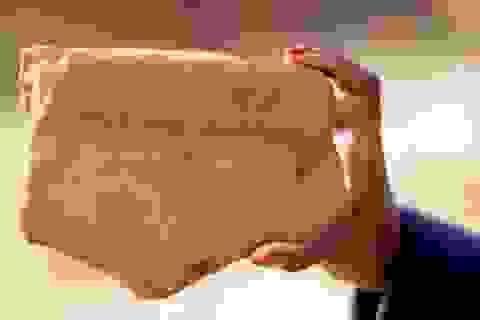 Người Ai cập đã sản xuất bia cách đây 5.000 năm
