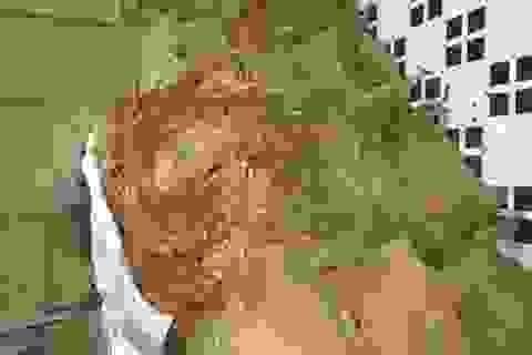 Phá vụ buôn lậu 36 tấn lá thuốc lá từ Trung Quốc vào Việt Nam