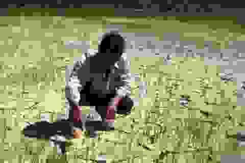 """Thủy điện chống """"khát"""" cho nông dân miền Trung và Tây Nguyên"""