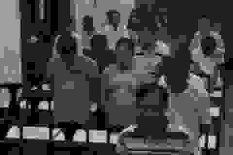 Gần 50 con bạc trường gà vùng ven bị bắt giữ