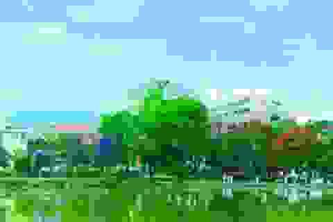 Trường Cao đẳng Cộng Đồng Hà Tây thông báo tuyển sinh xét tuyển nguyện vọng 2 năm 2013
