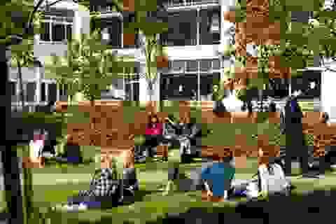 Con đường ngắn hơn vào đại học chuyên ngành Khách sạn và Du lịch tại Trường ĐH Brighton - Kaplan UK