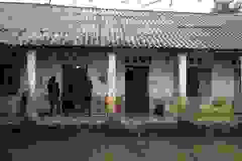 Hà Nội: Trường mầm non cạnh khu nuôi lợn, cô trò khổ vì mùi xú uế
