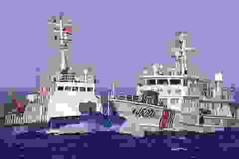 Tàu Trung Quốc hung hãn, đâm hỏng 8 tàu chấp pháp Việt Nam