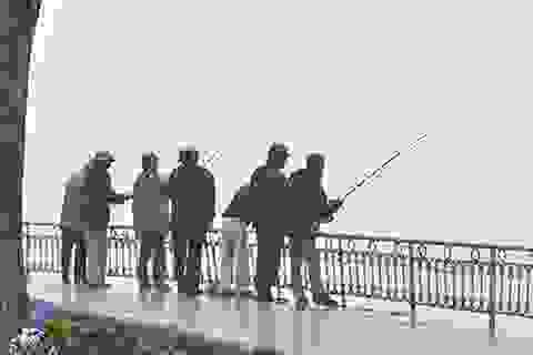 """Hàng trăm """"cần thủ"""" trộm cá giữa ban ngày ở Hồ Tây"""
