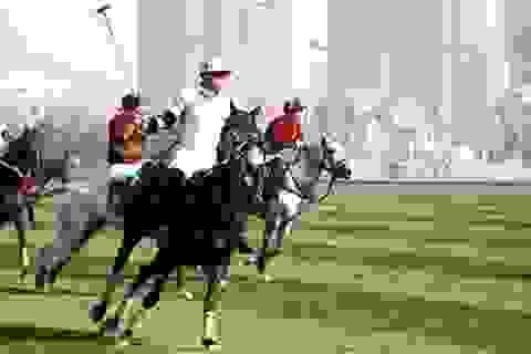 Nhà giàu Trung Quốc đua phô diễn vẻ quý tộc bằng thú chơi polo