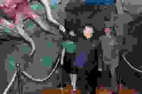 """Phát hiện nhiều công ty """"ma"""" của Triều Tiên tại các thiên đường thuế"""