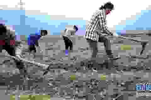 Phụ nữ nông thôn thiếu tình cảm khiến chính quyền Trung Quốc lo lắng