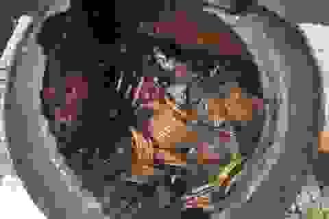 Mỹ: Dắt chó đi dạo phát hiện hũ tiền vàng cổ 10 triệu USD