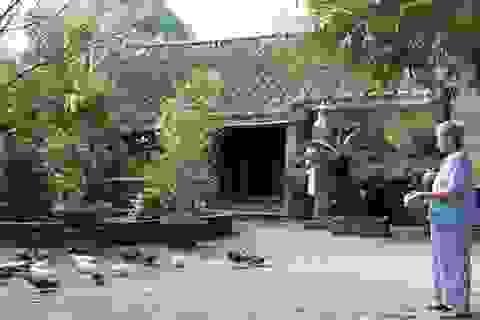 Ấn tượng nhà cổ ở Túy Loan