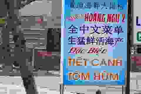 Nhan nhản biển hiệu chữ Trung Quốc trên đường phố Đà Nẵng