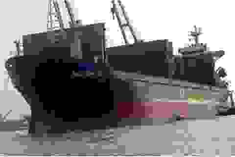 Vinashinlines đã chuyển tiền cho thủy thủ tàu New Horizon