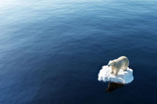 Lần đầu tiên băng ở biển Bắc Cực không thể đông lại vào cuối tháng 10