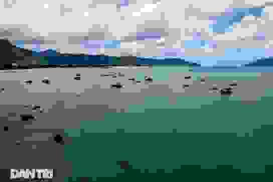 Cảnh vắng bóng du khách ở bãi biển trong xanh nhất thế giới