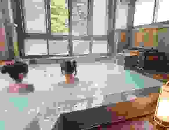 Nghi thức thanh tẩy, tắm onsen thành biểu tượng văn hóa Nhật như thế nào?