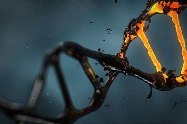 Trà làm thay đổi các gen liên quan đến nguy cơ ung thư ở phụ nữ