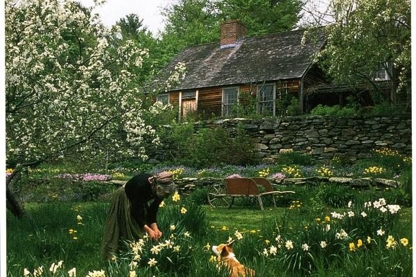 Sửng sốt với ngôi nhà hoa hồng đẹp như bước ra từ truyện cổ tích của cụ bà 92 tuổi