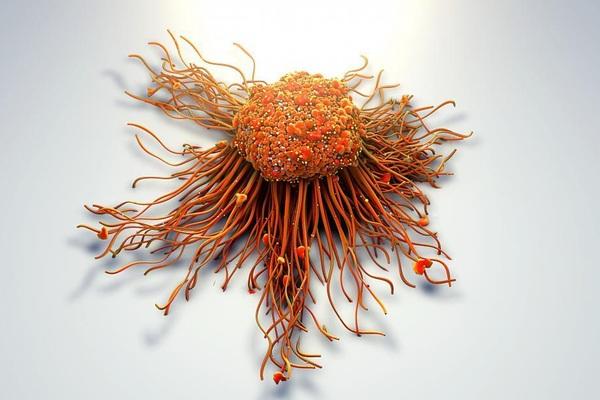 """Phát hiện vitamin D có thể """"chặn đứng"""" vũ khí hàng đầu của tế bào ung thư"""