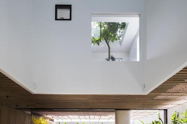 """""""Nhà trên mây"""" giữa lòng Sài Gòn với các khu vườn lơ lửng độc lạ"""