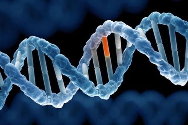 Bất hoạt gene - kỹ thuật mới giúp trị ung thư vú khó chữa