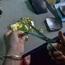 """Bí mật làng nghề """"đập"""" chỉ vàng thành một tấm lá vàng rộng 1m2 ở Việt Nam"""