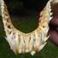 11 sự thật thú vị về hệ thống xương của người