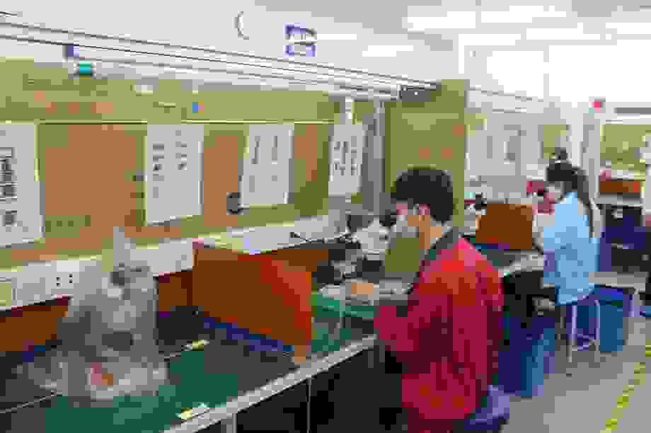 Hải Phòng: Hỗ trợ lao động nữ mang thai mất việc do dịch Covid-19