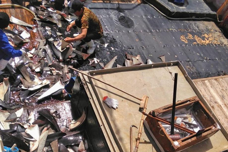 """Ngư dân Indonesia """"tố"""" tàu cá Trung Quốc ngược đãi, vắt kiệt sức lao động"""
