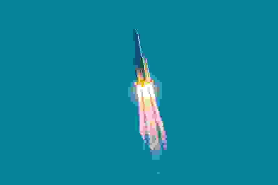 Mảnh vỡ khổng lồ từ tên lửa của Trung Quốc rơi tự do xuống Trái Đất