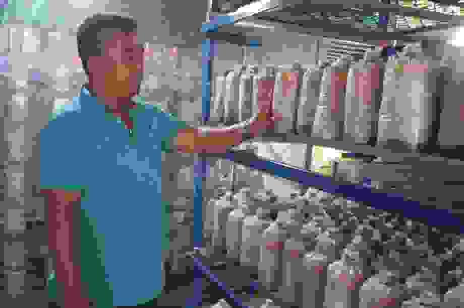 Quảng Nam: U40 xứ trồng nấm sò thu tiền rủng rỉnh quanh năm